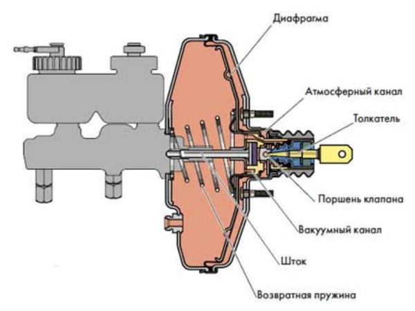 Устройство и вид вакуумника в разрезе
